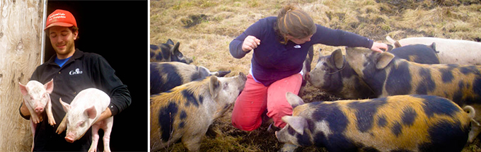 Groundworks Farm - Opportunities