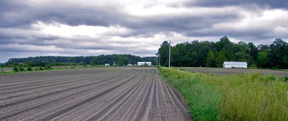 Groundworks Farm - Pittsville, Maryland
