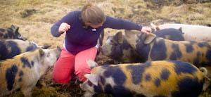 Our Farming Practices