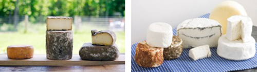 Summer-Fall Local, Artisanal Cheese Share