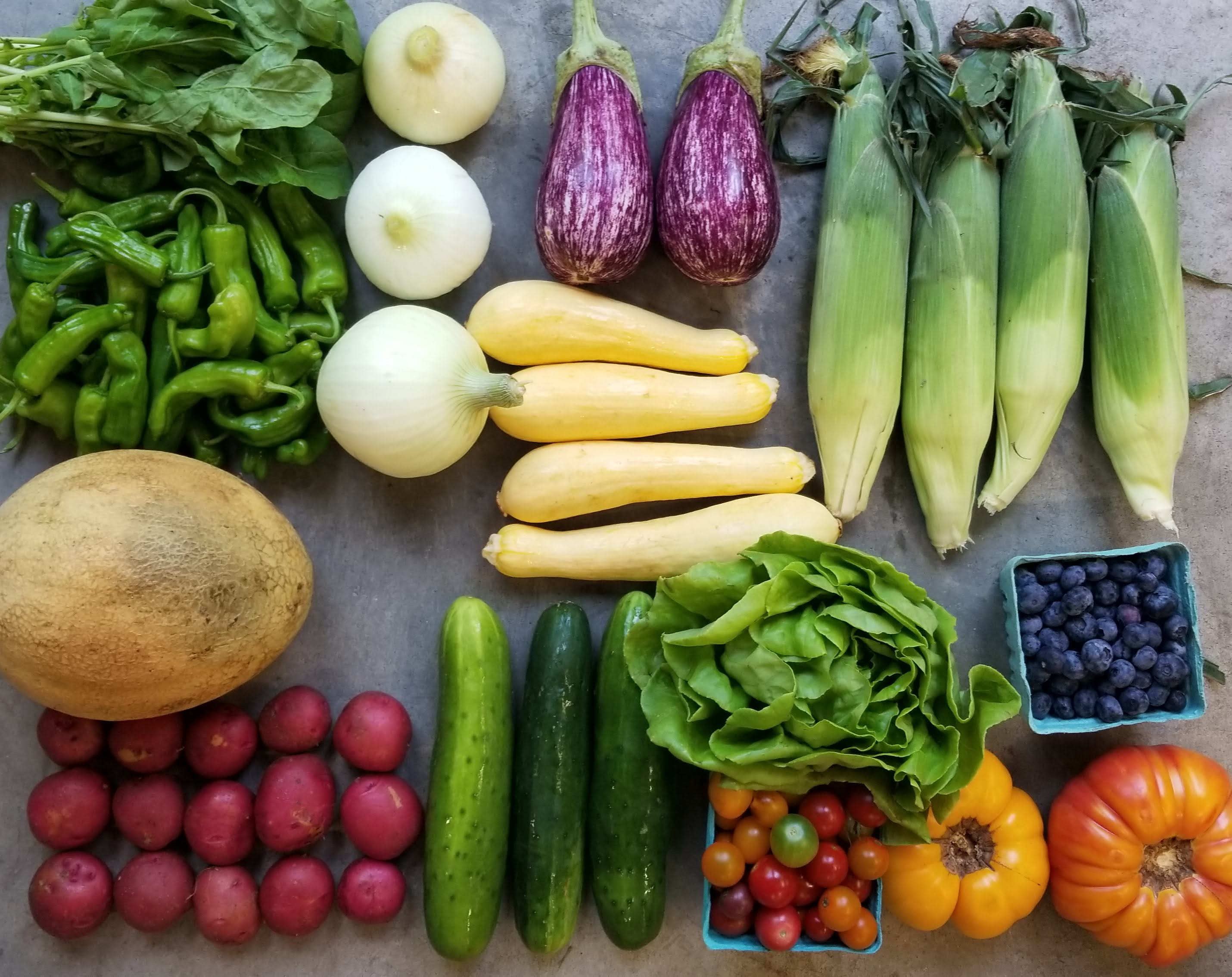 Summer-Fall Local Produce Farm Share